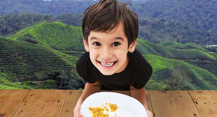 [16.11.17] Festival «Alimenterre» – Accaparement de terres ?