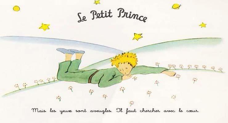petit prince 9